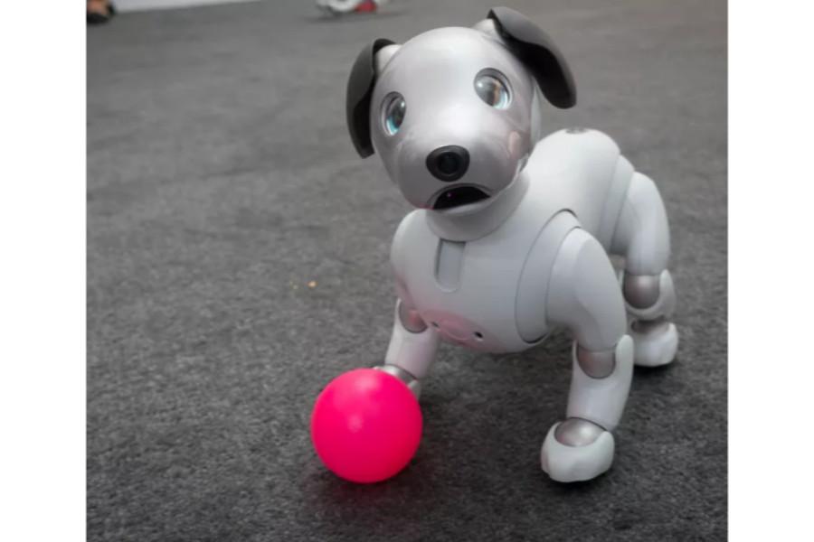 """بالفيديو: كلب سوني المتاح الآن للشراء سيدهشك مدى """"ذكاءه"""""""